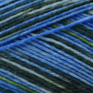 Opal Jam Session Jazz Yarn (1 - Super Fine)