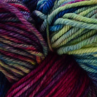 Malabrigo Aniversario Rios Yarn (4 - Medium)