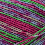 Opal Continent Leap Adventure Yarn (1 - Super Fine)