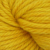Estelle Goldenrod Estelle Chunky Yarn (5 - Bulky)