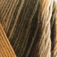 Bernat Beachwood Stripes Super Value Stripes Yarn (4 - Medium)