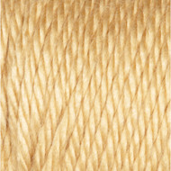 Caron Autumn Maize Simply Soft Yarn (4 - Medium)