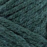 Lion Brand Juniper Hue + Me Yarn (5 - Bulky)