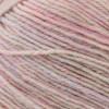 Regia #06840 Rosa Shine Regia 4-ply Uni Yarn (1 - Super Fine)