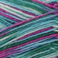 Regia #01166 Spitzbuben Regia 4-ply Color Yarn (1 - Super Fine)