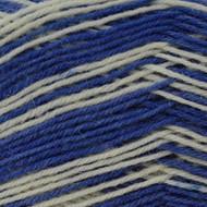 Regia #01740 Corsica Regia 4-ply Color Yarn (1 - Super Fine)