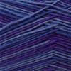 Regia #02892 Manhattan Regia 4-ply Color Yarn (1 - Super Fine)