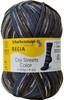 Regia #02894 Hudson Heights Regia 4-ply Color Yarn (1 - Super Fine)
