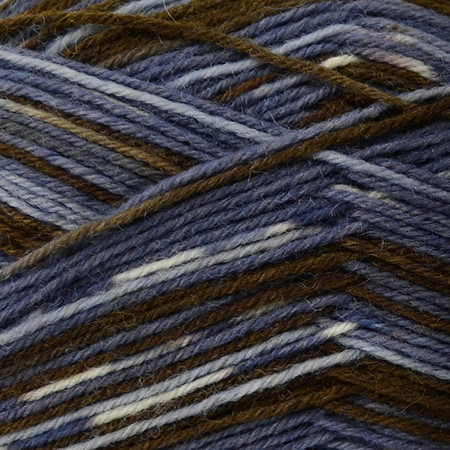 Regia #02896 Riverdale Regia 4-ply Color Yarn (1 - Super Fine)