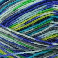 Regia #07205 Pfau Regia 4-ply Color Yarn (1 - Super Fine)