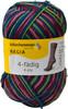 Regia #07707 Schneeanzug Regia 4-ply Color Yarn (1 - Super Fine)