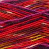 Regia #09375 Rio Regia 4-ply Color Yarn (1 - Super Fine)