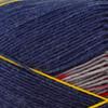 Regia #09091 Jolster Design Line Pairfect Yarn (1 - Super Fine)