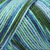 Caron Spring Brook Simply Soft Yarn (4 - Medium)