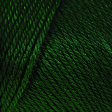Caron Dark Sage Simply Soft Yarn (4 - Medium)