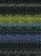 Noro #252 Black, Turq, Green Silk Garden Yarn (4 - Medium)