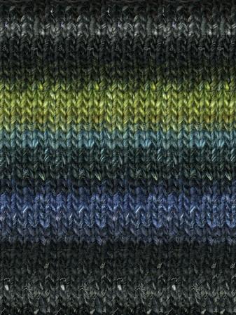 Noro #252 Black, Turq, Green Silk Garden Yarn (4 - Medium)