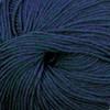Cascade Aporto 220 Superwash Yarn (4 - Medium)