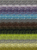 Noro #272 Greys, Lime, Brown Silk Garden Sock Yarn (1 - Super Fine)