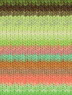 Noro #345 Lime, Pink, Orange, Brown Kureyon Yarn (4 - Medium)