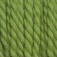 Patons Spring Green Classic Wool Bulky Yarn (5 - Bulky)
