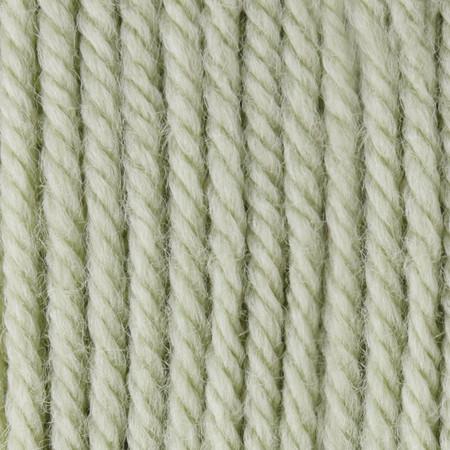 Patons Cherished Green Canadiana Yarn (4 - Medium)