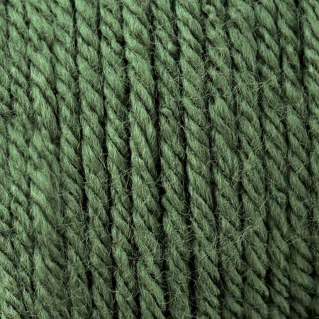 Patons Dark Green Tea Canadiana Yarn (4 - Medium)