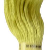 DMC 165 - DMC Embroidery Floss (Thread)