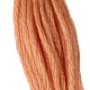 DMC 3771 - DMC Embroidery Floss (Thread)