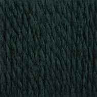Patons Rich Teal Shetland Chunky Yarn (5 - Bulky)