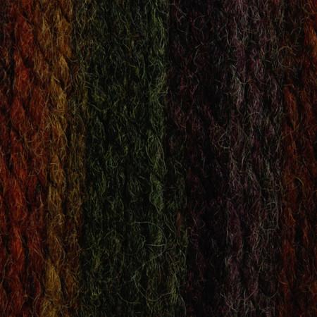 Patons Harvest Variegated Shetland Chunky Yarn (5 - Bulky)