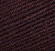Regia Cinamon Color Regia Pairfect Yarn (1 - Super Fine)