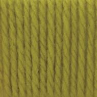 Bernat Grass Softee Chunky Yarn (6 - Super Bulky)