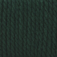 Bernat Dark Green Softee Chunky Yarn (6 - Super Bulky)