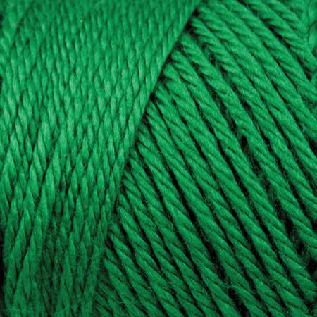 Caron Kelly Green Simply Soft Yarn (4 - Medium)
