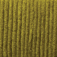 Bernat Leaf Green Beyond Yarn (6 - Super Bulky)