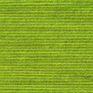 Lion Brand Lime Wool-Ease Tonal Yarn (5 - Bulky)