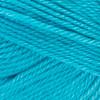 Red Heart Turquoise Soft Yarn (4 - Medium)