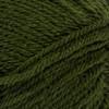 Red Heart Dark Leaf Soft Yarn (4 - Medium)