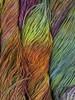 Malabrigo Arco Iris Arroyo Yarn (2 - Fine)
