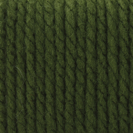 Bernat Eucalyptus Softee Chunky Yarn (6 - Super Bulky)