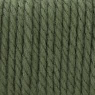 Bernat Forest Softee Chunky Yarn (6 - Super Bulky)