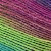 Opal Surprise 4065 Tiedye Sock Yarn (1 - Super Fine)