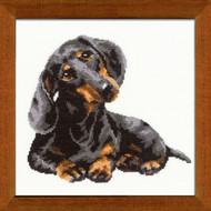 Riolis Cross Stitch Dachshund Axel Cross Stitch Kit