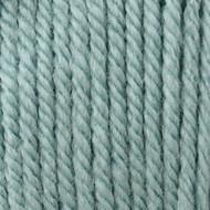 Patons Pale Teal Canadiana Yarn (4 - Medium)