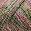 Caron Rose Garden Simply Soft Yarn (4 - Medium)