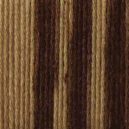 Caron Coffee Latte Brown Ombre Simply Soft Yarn (4 - Medium)