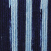 Caron SaturdayBlue Jeans Ombre Simply Soft Yarn (4 - Medium)