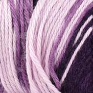 Caron Grape Purple Ombre Simply Soft Yarn (4 - Medium)