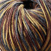 Sugar Bush Cabin In The Woods Itty-Bitty Yarn (1 - Super Fine)